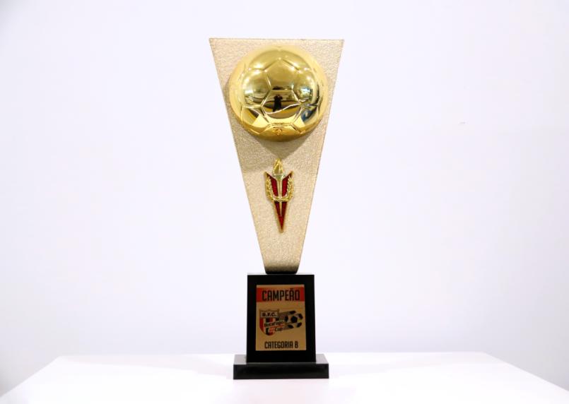 2013年荣获博塔弗戈杯冠军(B级)